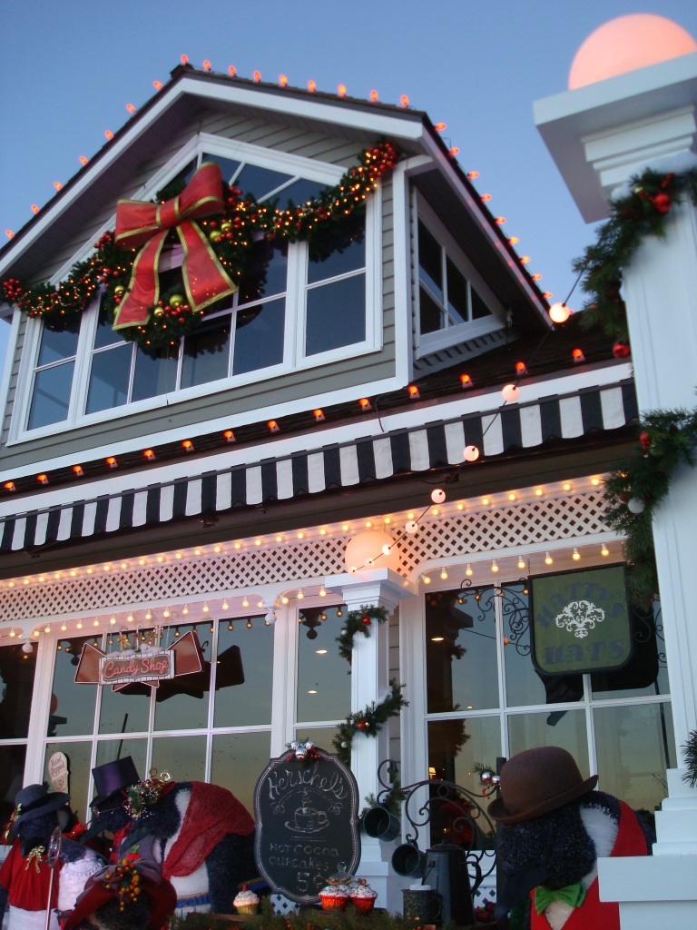 One of many gorgeous homes decorated for Christmas.